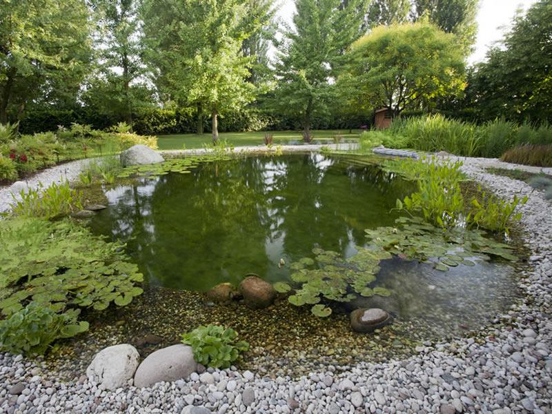 Un giardino d acqua e un laghetto balneabile una scelta di benessere biolaghi acqua e giardino - Giardino d acqua ...