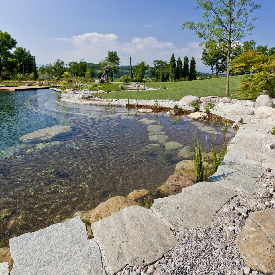 Biolaghetto italia laghi balneabili e ornamentali for Laghetto balneabile progetto