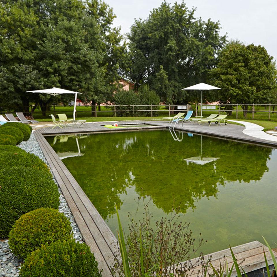 Koi biopiscine ecolaghi e piscine naturali for Alghe filamentose laghetto