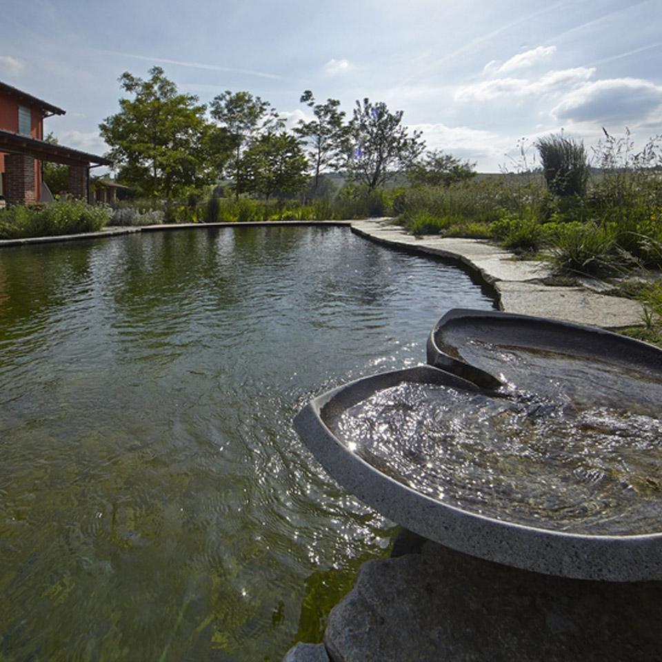 Biolaghi acqua e giardino biopiscine ecolaghi e for Piscine per pesci