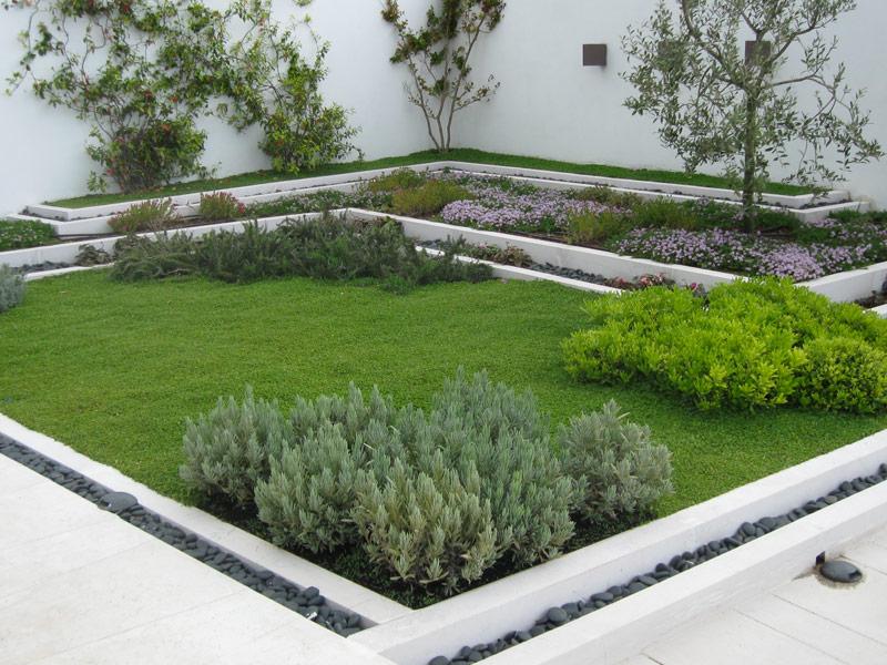 Orto e giardino? Sì, ma sul balcone / Piante, Fiori e Animali